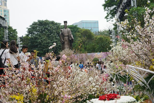 Nhiều hoat động tại lễ hội hoa Anh Đào Nhật Bản – Hà Nội 2020