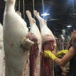 TPHCM yêu cầu nhập khẩu thịt lợn để phục vụ dịp Tết
