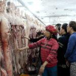 """Vì sao nhập khẩu nhiều nhưng giá thịt heo không thể """"hạ nhiệt""""?"""