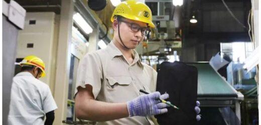 Bắt đầu cấp visa cho lao động Việt sang làm việc tại Nhật Bản