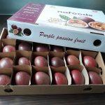 Chính thức xuất khẩu trái cây sang EU sau EVFTA