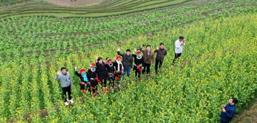 ADB hạ dự báo tăng trưởng của Việt Nam xuống mức 5,8%