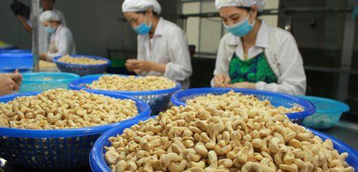 Cơ hội cho hàng hóa Việt Nam xuất khẩu sang Peru