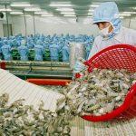 Xuất khẩu thuỷ sản: Không lo tăng trưởng kém nếu dịch bệnh sớm được kiểm soát