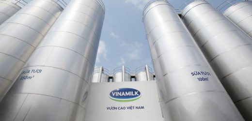 Hành trình 45 năm ghi dấu ấn thương hiệu của Vinamilk trên thế giới